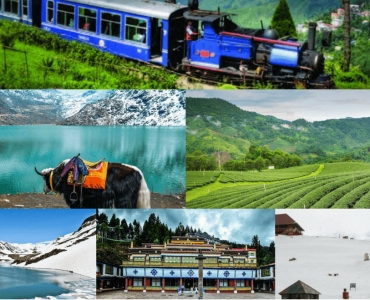Travels Agency in Gangtok